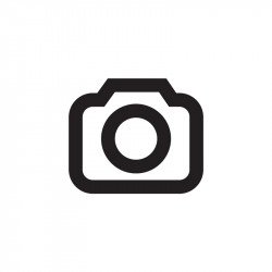 Wonderful 16.3Hh Irish Sports Horse